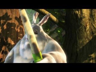 Большой заяц Бак / Big Buck Bunny (2008) HDRip 720p